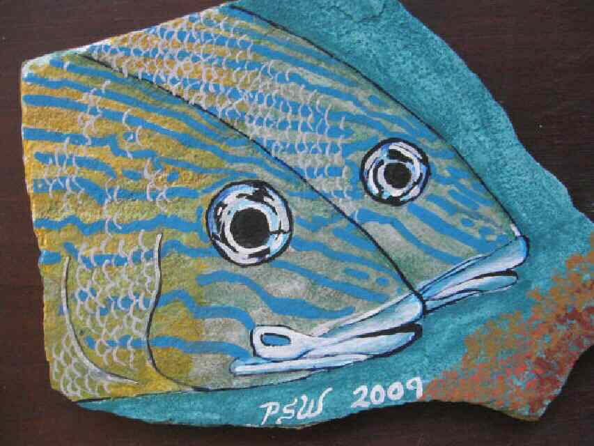 Blue grunt Fish