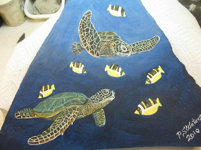 Sea Turtles swimming